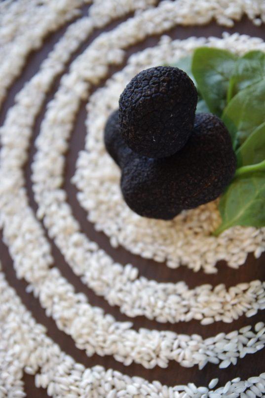 Hong Kong black truffle menus - DiVinio