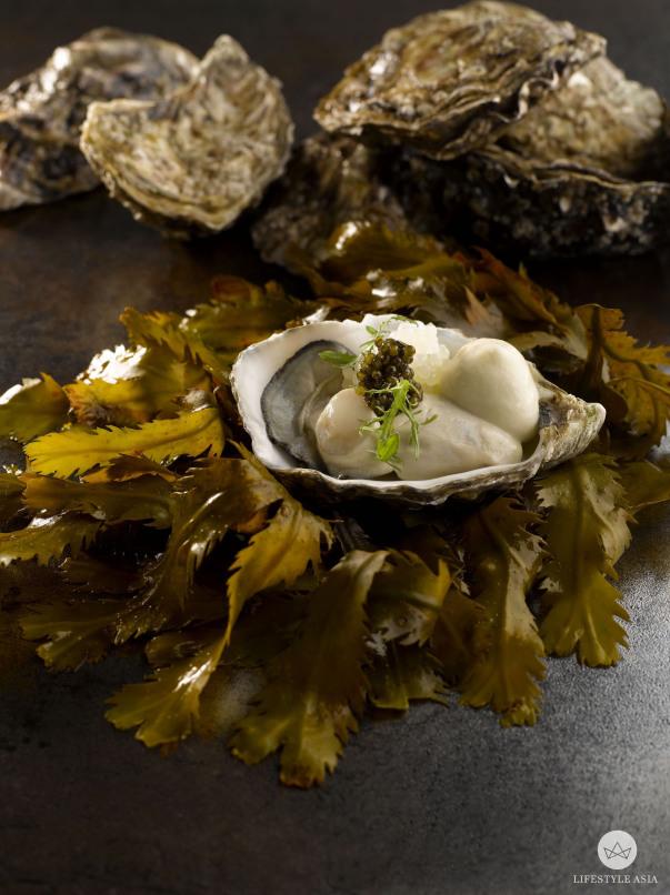 JAAN 'Majestic' Irish Oyster (1)