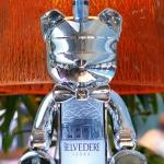 Belvedere Vodka_Shot 2